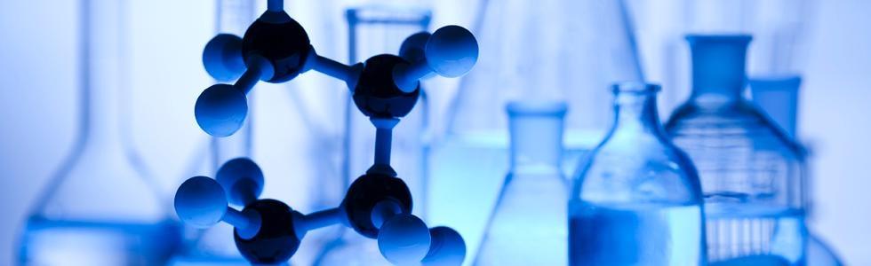 Guide d'interprétation de l'analyse de la chimie du sang